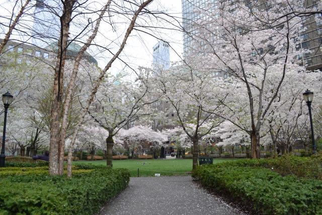 spring new york